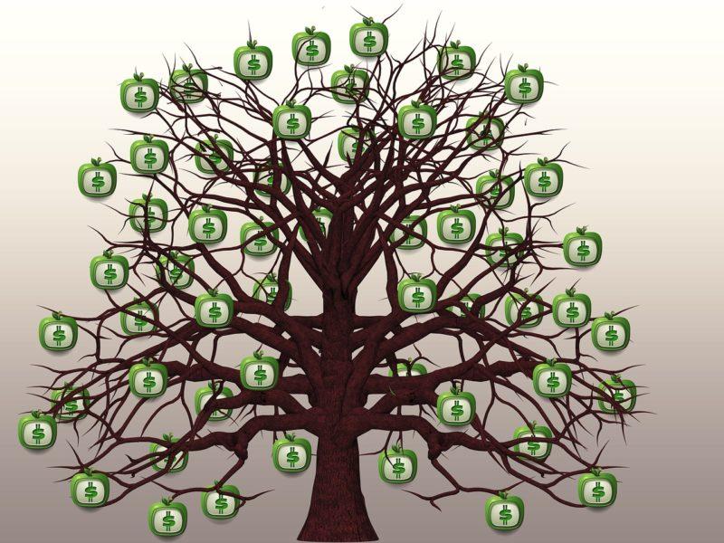 arbre montrant comment diversifier ses sources de revenus