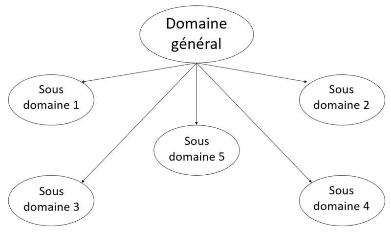 schéma de division d'un domaine en plusieurs sous domaines
